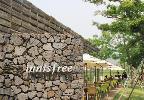 innisfree jeju island south korea sugarsheet travel