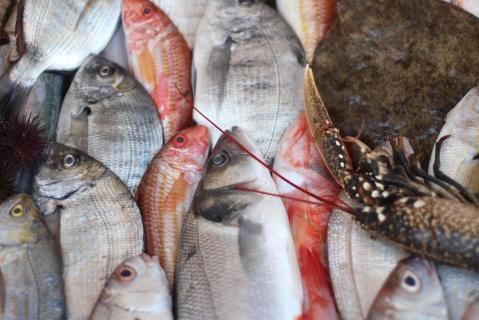 Essaouira Sugarsheet Fish best Beach seafood restaurant gluten free